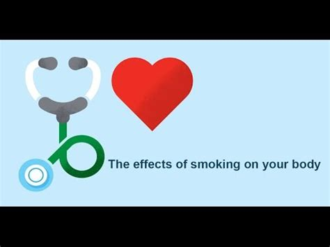Essay effect of smoking on health body